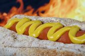 image of hot dog  - hot dog with red sausage and yellow mustard copy space macro closeup - JPG
