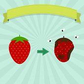 Постер, плакат: Rotten Strawberry