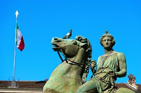 pic of torino  - Equestrian statue of Pollux in the Royal Palace  - JPG