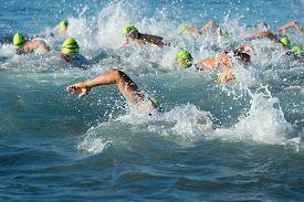 stock photo of triathlon  - Group people in wetsuit swimming at triathlon - JPG