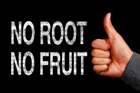 pic of sarcastic  - Text No Root No Fruit is written on the blackboard with thumb up hand aside - JPG