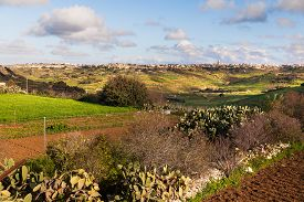 picture of gozo  - Panorama view on fields and landmarks. Gozo island Malta. Sunny winter day. ** Note: Soft Focus at 100%, best at smaller sizes - JPG