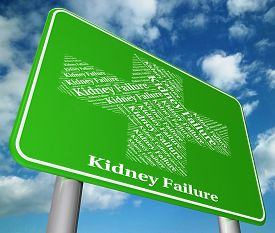 foto of sick kidney  - Kidney Failure Meaning Lack Of Success And Ill Health - JPG