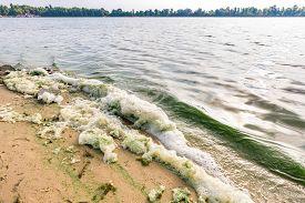 stock photo of green algae  - Foam and green algae pollution in the Dnieper river in Kiev - JPG