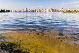 foto of sand lilies  - Obolon Skyline close to the Dnieper river in Kiev Ukraine - JPG