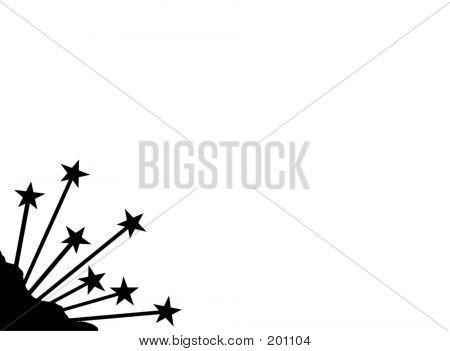 Border Or Corner - Black And White Star Plant