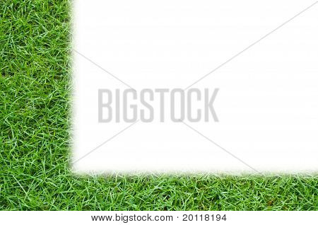 Simple template green grass background isolated