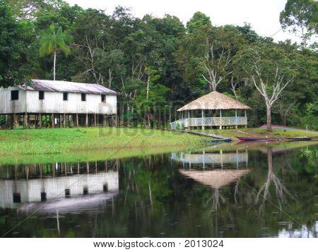 Amazon Rio