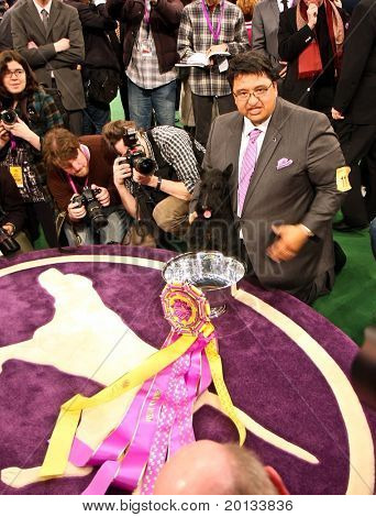 NEW YORK - FEBRUARY 16: Scottish Terrier Sadie and handler Gabriel Rangel win Best in Show at the 134th Westminster Kennel Club Dog Show at Madison Square Garden on February 16, 2010 in New York.
