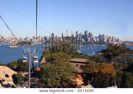 Sky Tram From Taronga Zoo