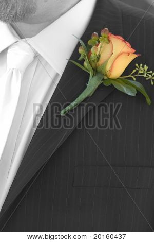 yellow  and orange rose on lapel