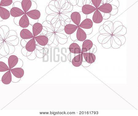 fourleaf clover flowers