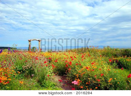 Spectacular Flower Garden Near The Water