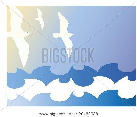 sea gulls and wave