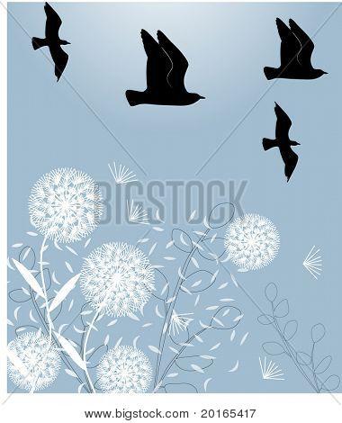 dandelions with birds vector