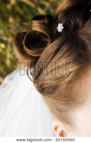 hair detail with veil peeking