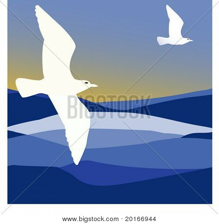 exotic waves with seagulls