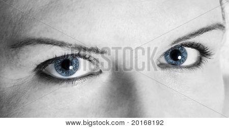 blau blaue Augen