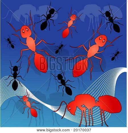 red ants vector