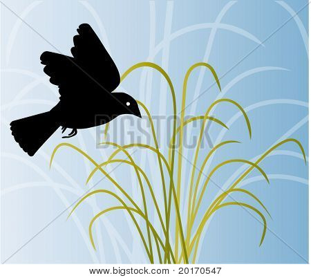 vetor de grama e o céu de pássaros