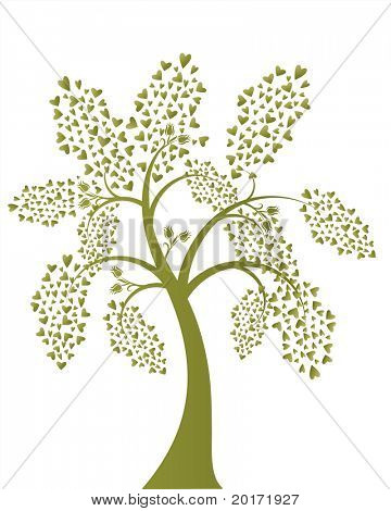 heart leaf tree vector