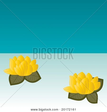 waterlilies vector