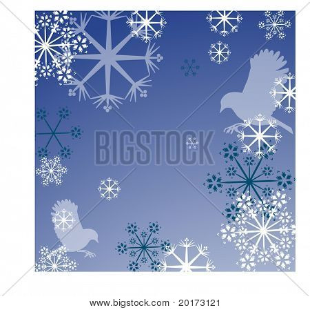 snowflake and bird frame