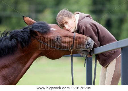 communication - young girl and bay horse in paddock