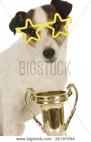 Meister Hund - jack Russel Terrier tragen Sterne geformte Brille sitzen mit Trophäe