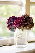 stock photo of flower vase  - pretty flowers in a jar  - JPG