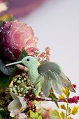 pic of tawdry  - tacky hummingbird and flowers - JPG