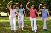 stock photo of tai-chi  - A group of asian ladies exercising in the park - JPG