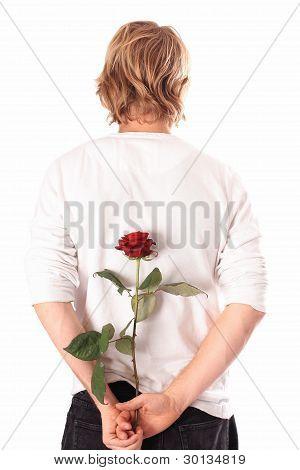 Liebhaber mit rose
