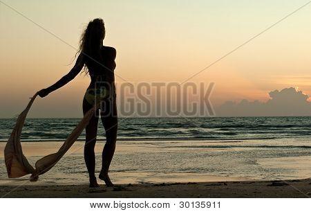 Beautiful Woman Look On Sunset