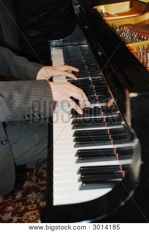 Hands Of The Musician.