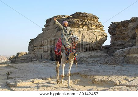 Arabic bedouin on camel with stick