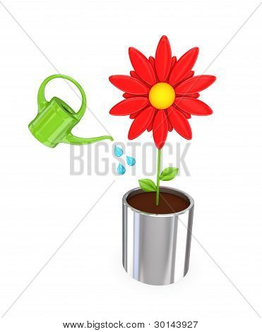 Big red flower in a chromed pot and green bailer.