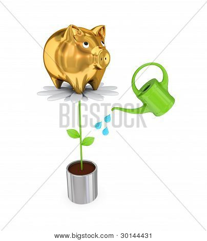Piggy bank on a big flower and a bailer.