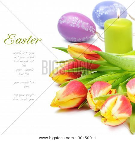 Spring Tulips In Easter Set