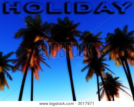Holiday Wild Palms