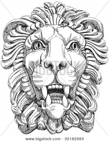 lion head. Bitmap copy my vector drawing