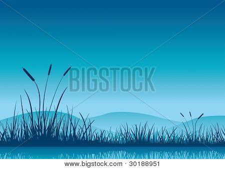 Marshland early morning. Vector illustration. Elements are layered separately in vector file.