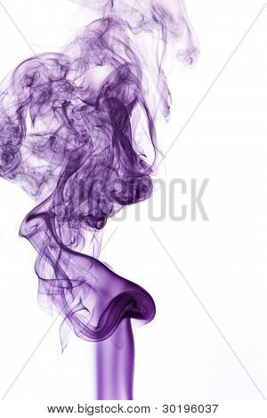 Violet Smoke In White Back