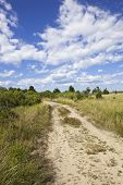 pic of martha  - dirt road on martha - JPG