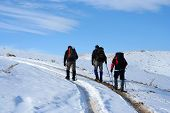 Trecking On Snowy Path On A Sunny Winter Day poster
