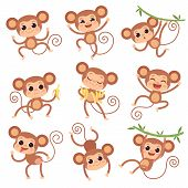 Baby Monkey. Wild Cartoon Animals Playing And Eating Banana Vector Characters Of Monkeys. Monkey And poster