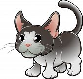 Cute Domestic Cat Vector Illustration poster