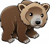 Cute Grizzly Brown Bear Vector Illustration