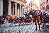 Rome, Italy. Horse in harness with coach for entertaining touristic strolls and city tours at Rotund poster