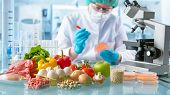 Food quality control expert inspecting specimens of groceries in the laboratory poster